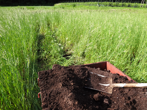 新植予定地堆肥散布