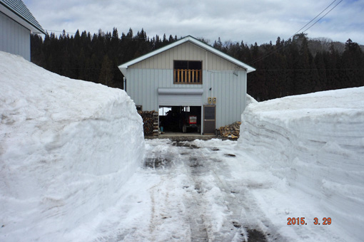 作業舎前除雪
