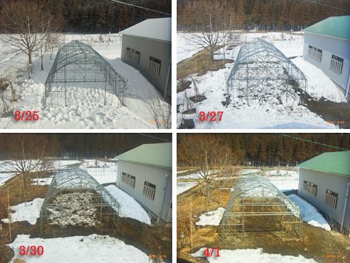 ハウスの消雪推移