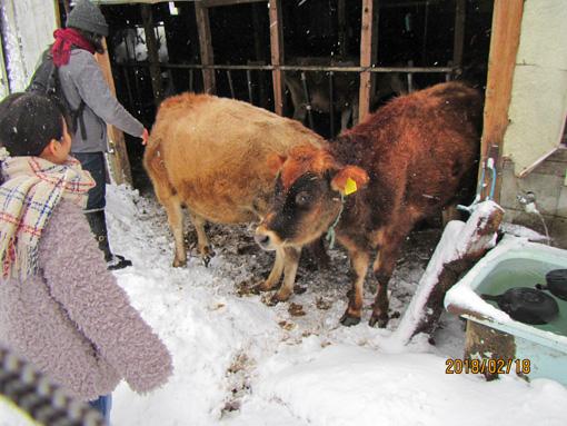 独立学園畜舎