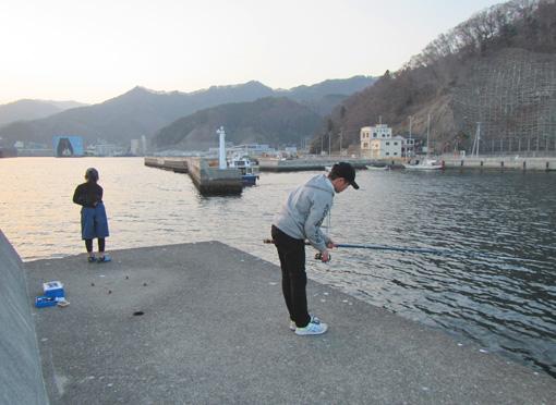 釜石港釣り