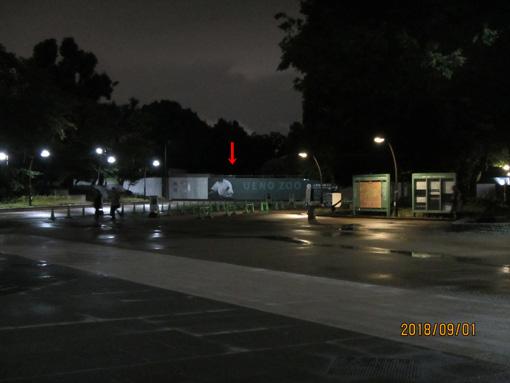 上野動物園ゲート