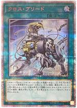 遊戯王カード 画像 CYHO クロス・ブリード 20thシークレット