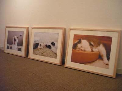 絵画 絵画販売 インテリア インテリア絵画 インテリアアート アート 現代アート