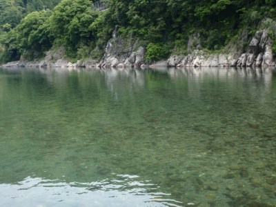 5月24日仁淀川
