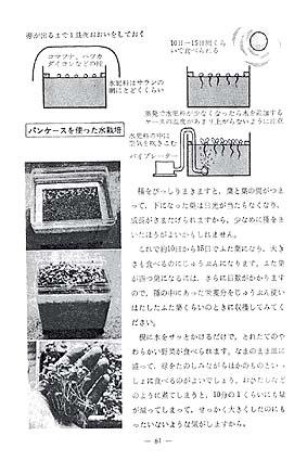 卓上菜園02