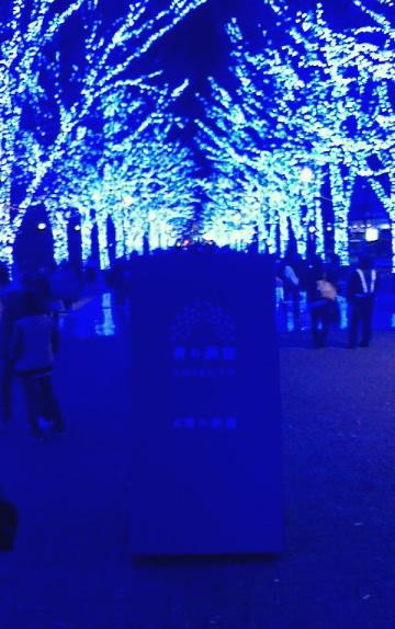 渋谷・代々木公園のケヤキ並木の「青の洞窟」イルミネーション