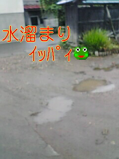 20070622_41731.jpg