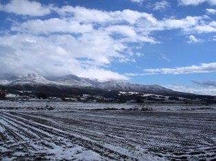 一面、雪、雪、雪。