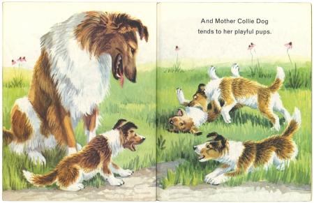 Animals on the Farmリトルゴールデンブック 1