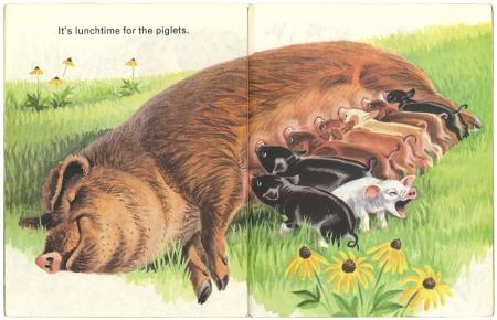 Animals on the Farmリトルゴールデンブック 2