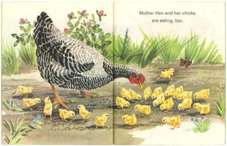 Animals on the Farm リトルゴールデンブック 3