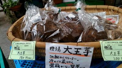 種子島大王芋