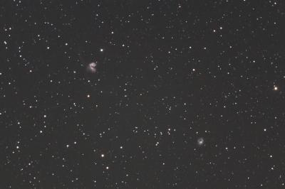 リングテール銀河