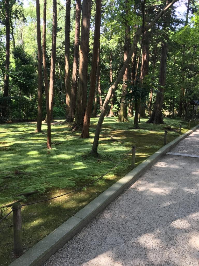 唐招提寺 苔庭