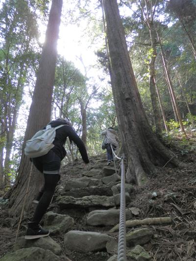 急傾斜の山道