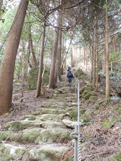 急傾斜の参道