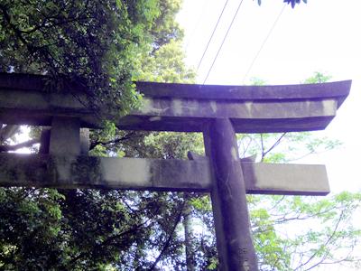 長浜神社鳥居