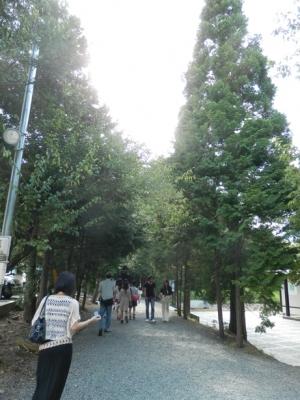 佐久佐女の森へ向かう参道
