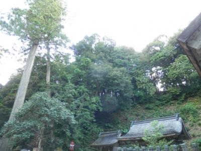 神魂神社本殿に向かって左側の氣の強い場所