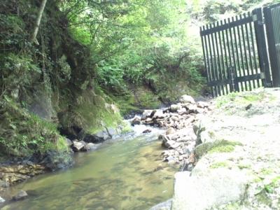 近くを流れる小川