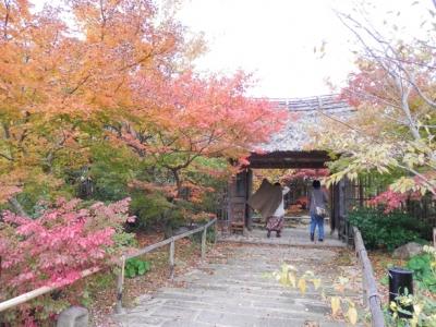 草庵のお庭の紅葉