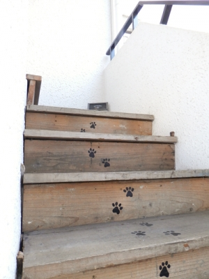 猫の足跡つき階段