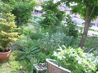 yasuko邸5