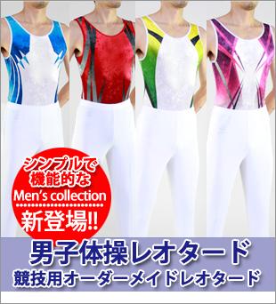 男子体操にゅいーコレクション
