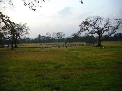環状列石遺跡