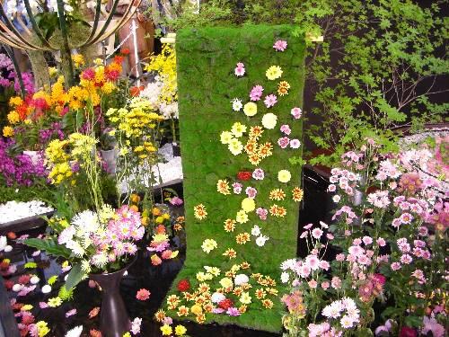 あたかも着物の帯にいろいろな花を散らしたように見えて、すばらしいデザインだと思う