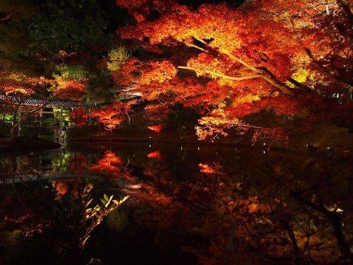 臥龍池周囲の紅葉と臥龍廊を写す水面