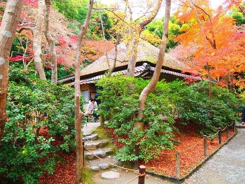 祇王寺の庵と紅葉