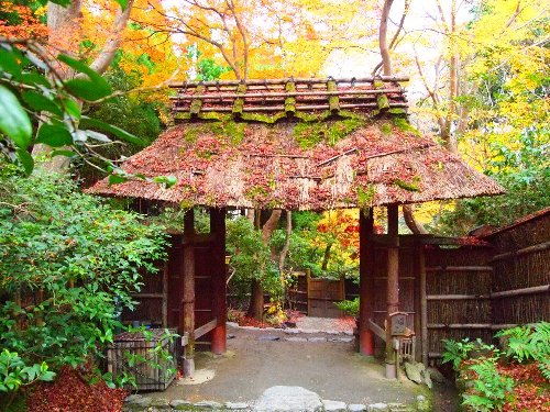 祇王寺の門