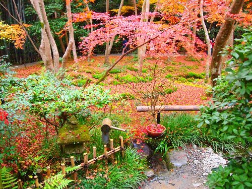 祇王寺の風雅な庭