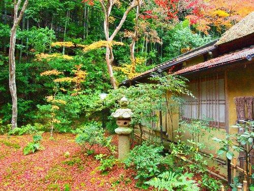 祇王寺の風雅な庭の燈籠