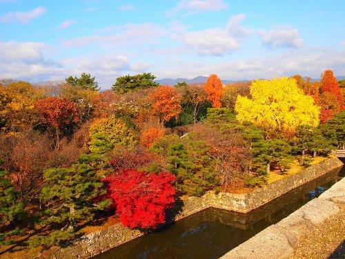 天守閣跡からみた二条城の秋の景色