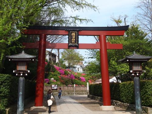 根津神社の鳥居越しに見えるつつじの丘
