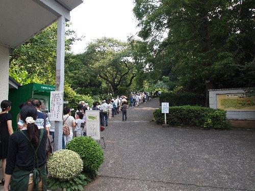 小石川植物園正門付近の混雑