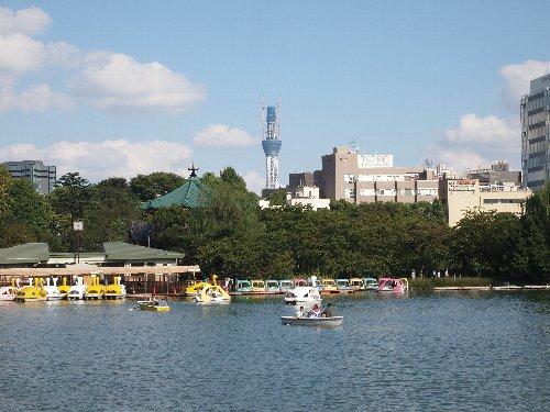 不忍池のほとりで東京スカイ・ツリーを見かける