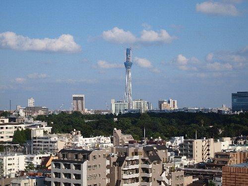 自宅屋上から見えた東京スカイ・ツリー