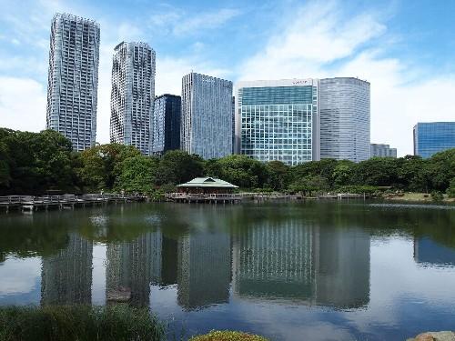 江戸時代の将軍の庭園と、汐留の超高層ビル群とが妙にマッチしている不思議な近未来的風景だと思うが、どうだろうか。
