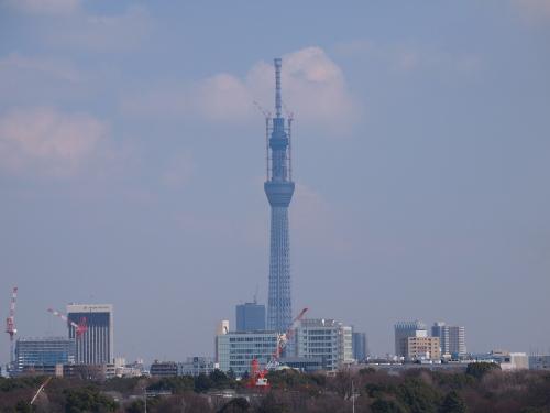 東京スカイツリー609m