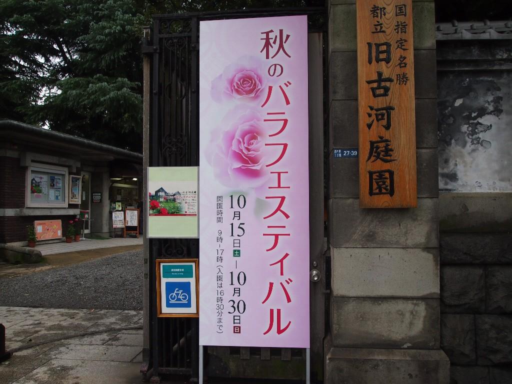 古河庭園の秋薔薇フェスティバル