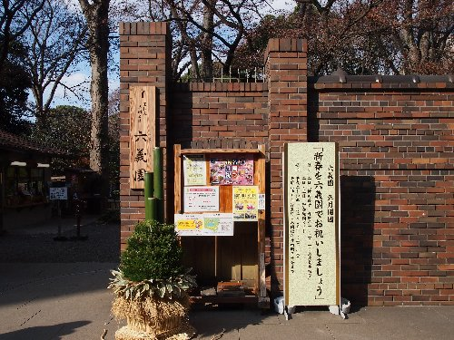 お正月の六義園の松飾り