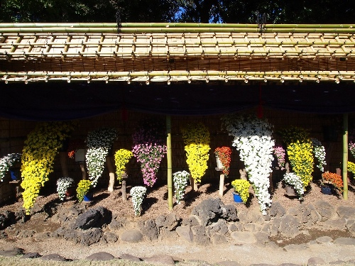 懸崖作り花壇