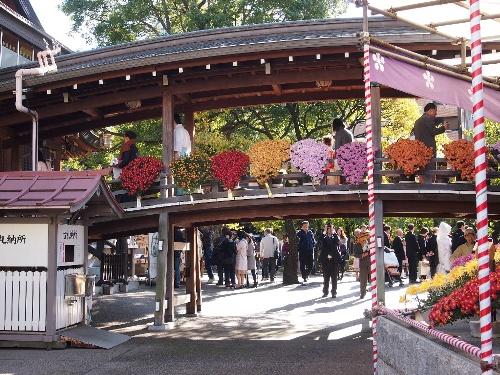 湯島天神の菊まつり・神前結婚式一行が渡り廊下を通る