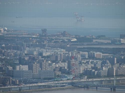 東京スカイツリーからの眺め、ディズニー・リゾート