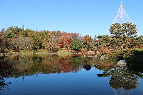 12月に初孫ちゃんと行った昭和記念公園
