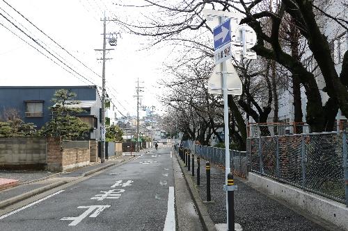 母校の中学校脇の暗渠となった川と桜の木